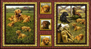 HAUTMAN BROTHERS - GOLDEN RETRIEVERS