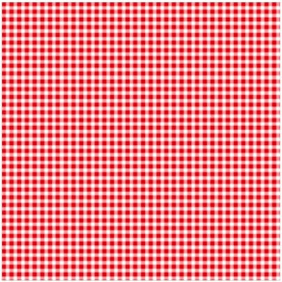 HOLLY HOLDERMAN - GOOD OLD GINGHAM